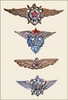 AirForce Badges of USSR