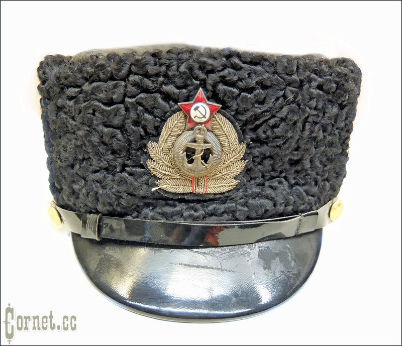 Chief Navy Officer 's cep